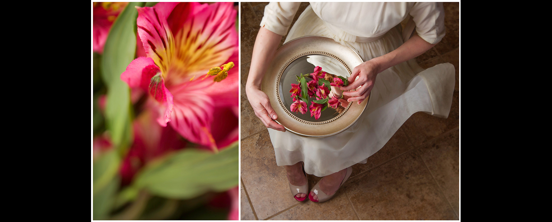 Alstroemeria: As I lay out the pieces before me, I realize those things I have the most   devotion     to continually reflect back to my heart.