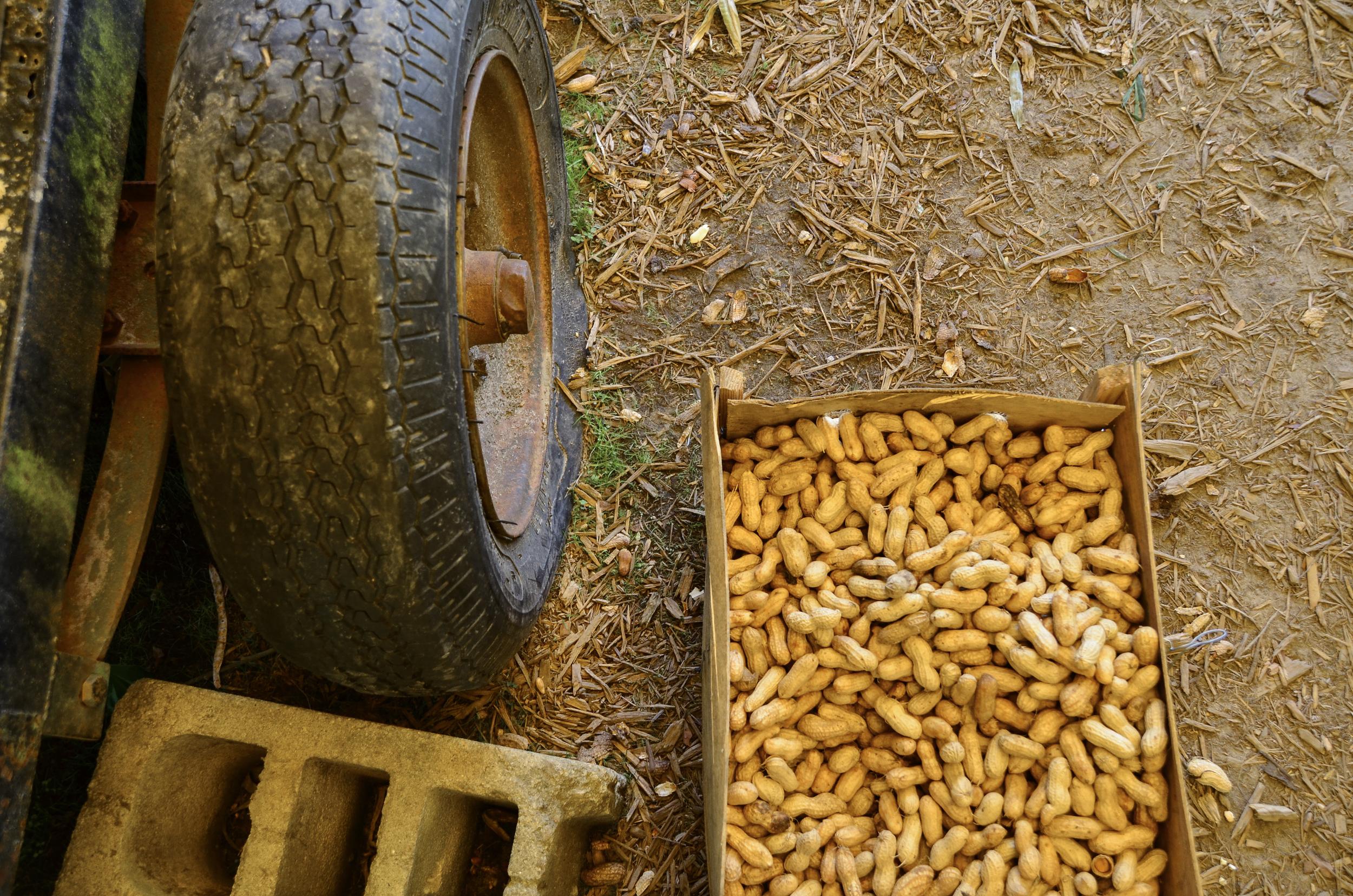 Market Peanuts