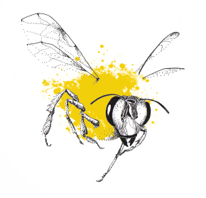 Telling The Bees: a new environmental arts and theatre project
