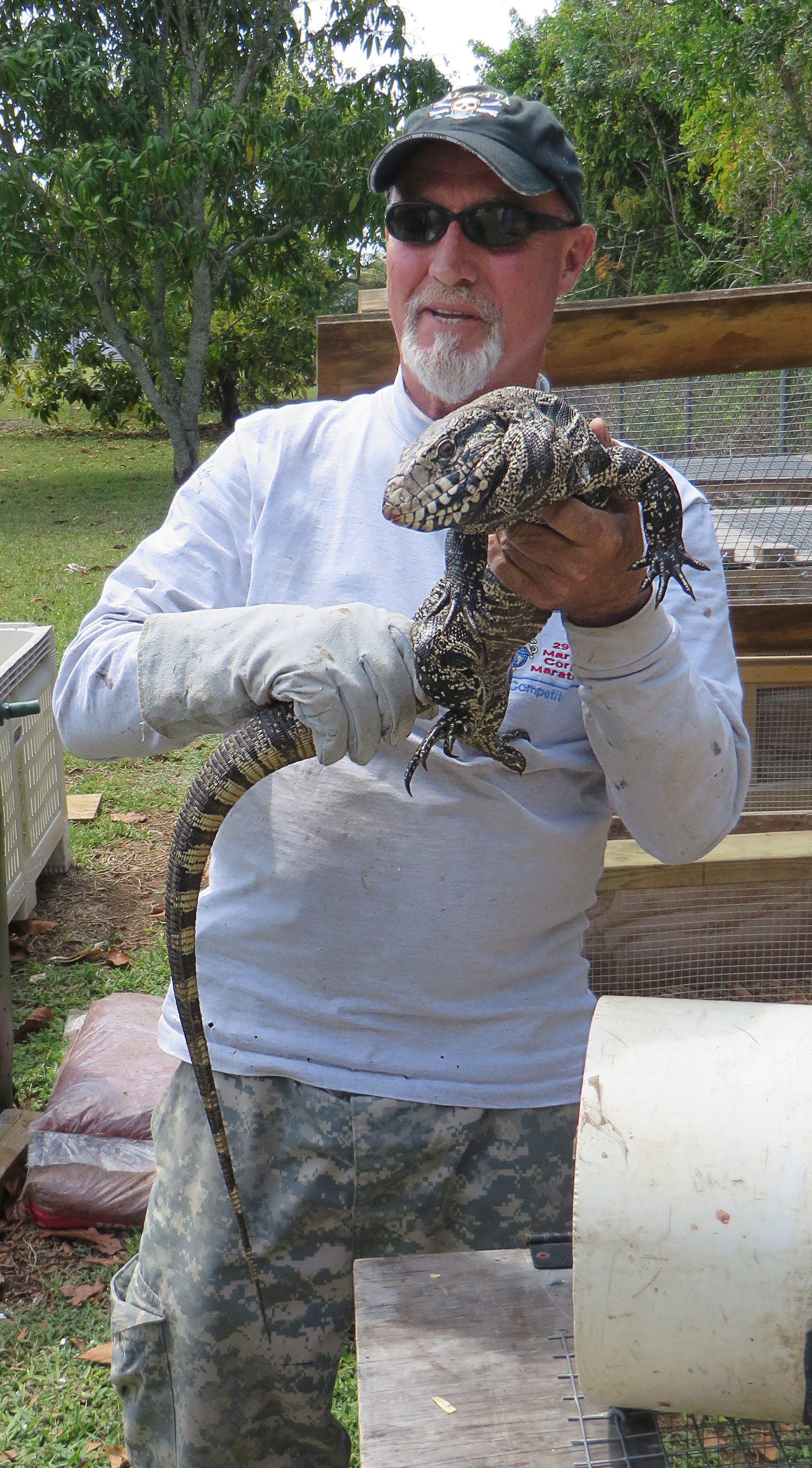 Rodney Irwin, Tegu Trapper in the Florida Everglades.jpg