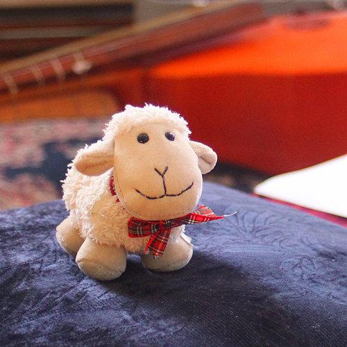 Pepe Bio - The official Gentle Shepherd mascot