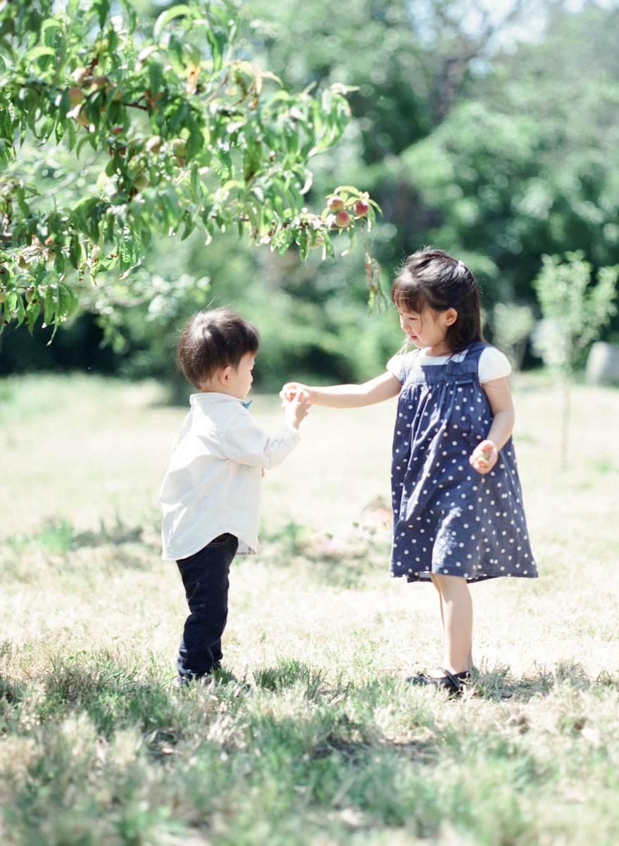Family Photography Ardenwood Farm - SF Film Photographer