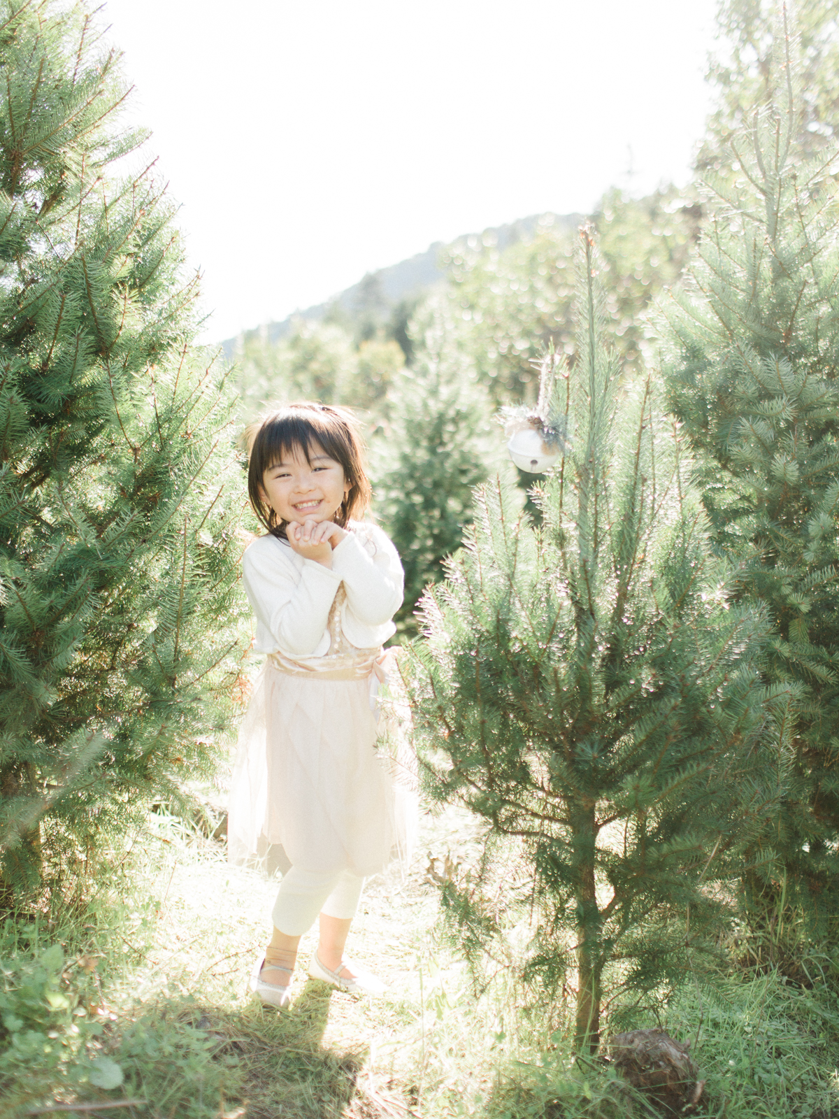 Holiday Family Mini Session San Francisco Fine Art Photographer