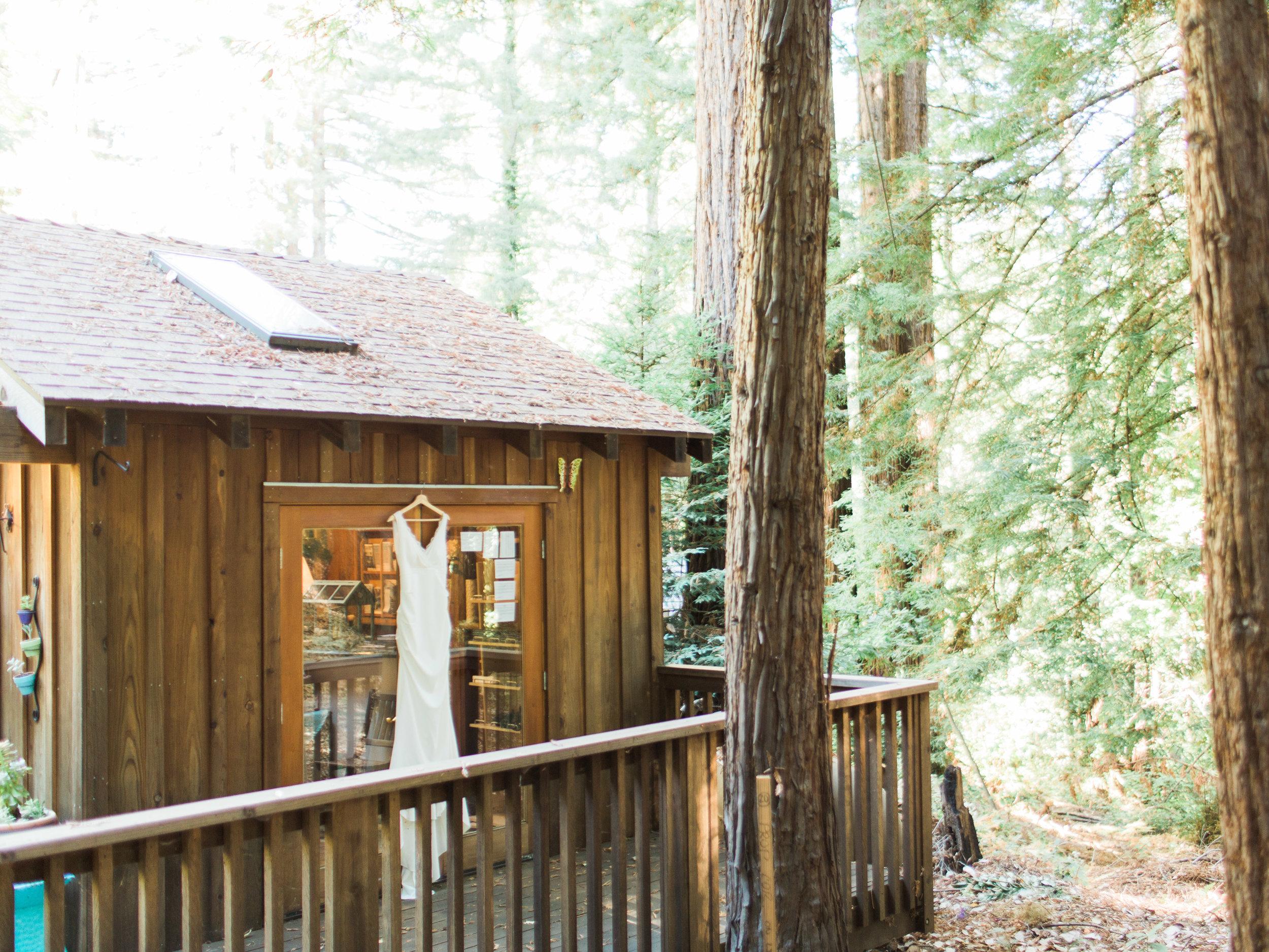 Sequoia Retreat Center Ben Lomond California Film Wedding Photographer