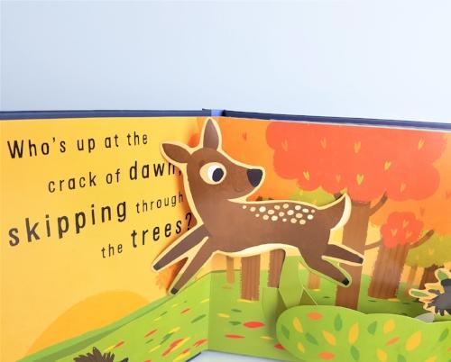 popupbooksample.jpg