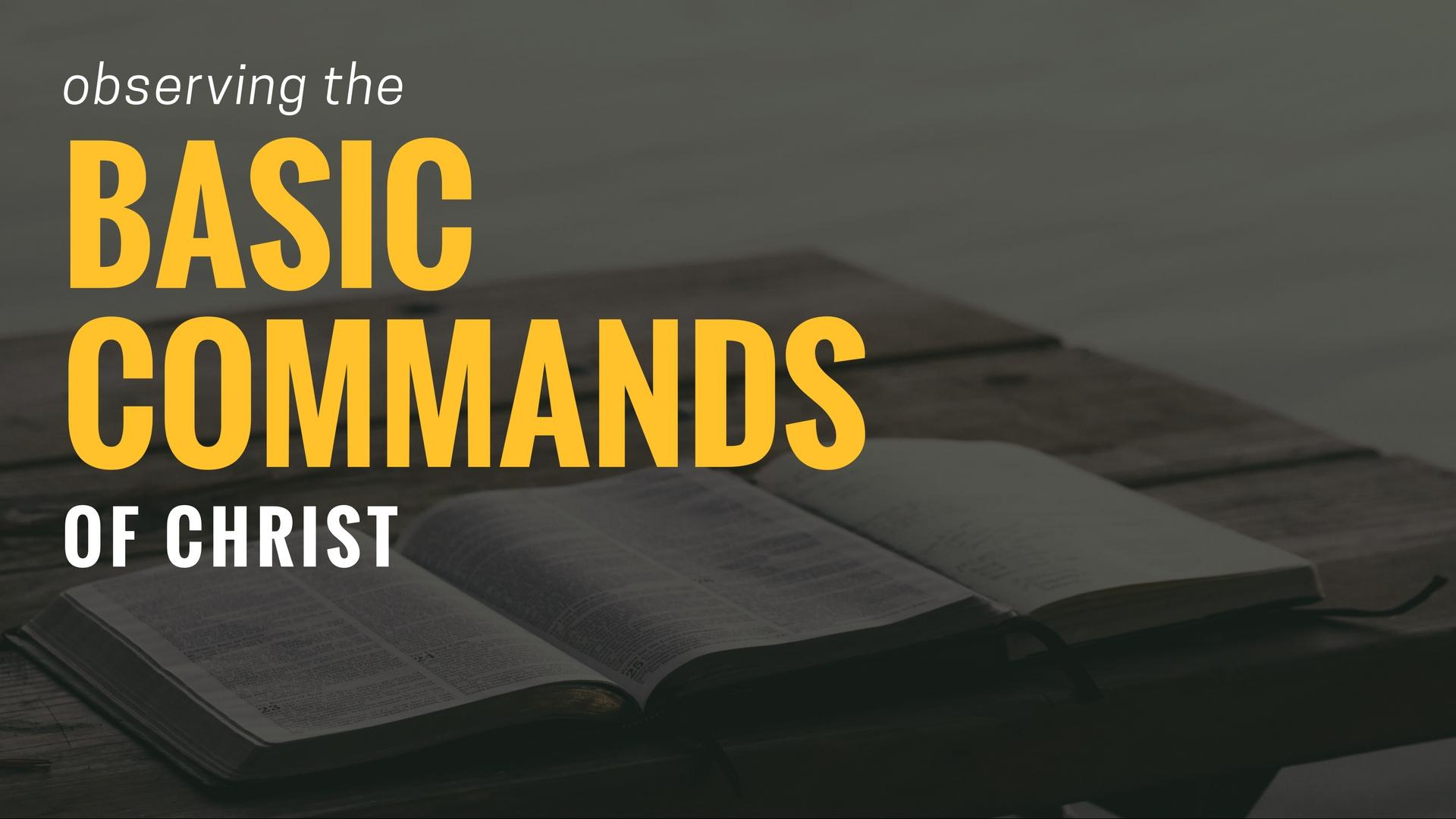 Basic Commands Wide.jpg