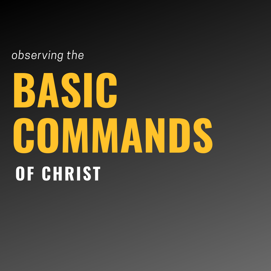 Basic Commands Icon.png