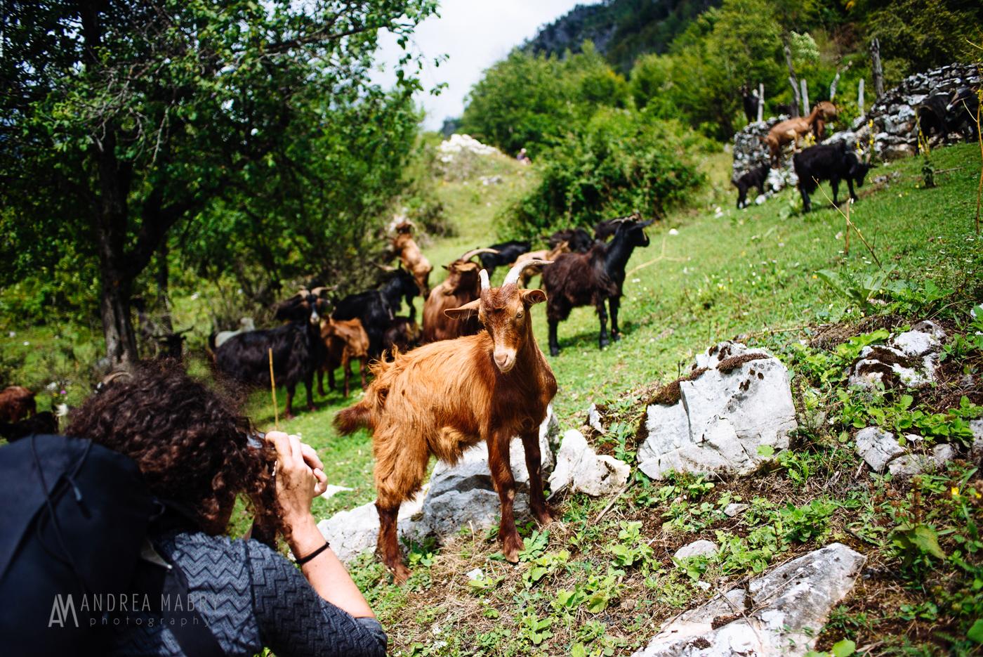 20160812-andreamabry-albania-043-2721-2.jpg