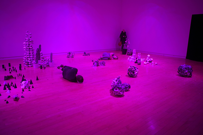 Less in Known on Earth  Exhibitions, 2015 and 2017