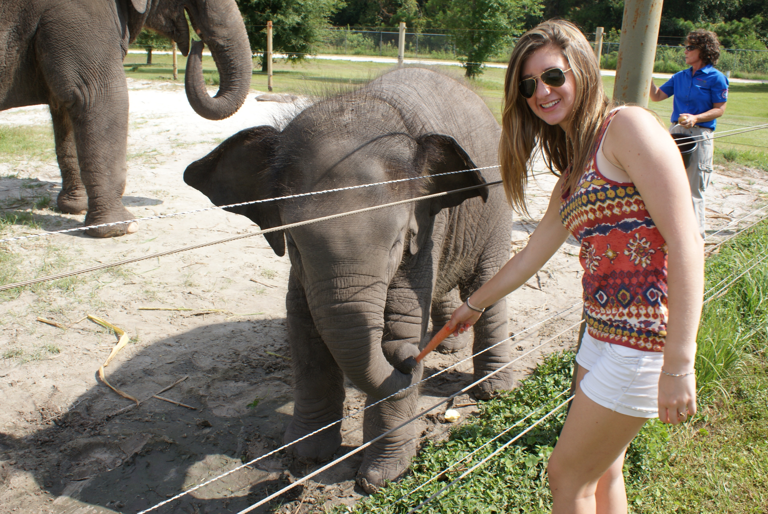 Elephant Conservation Ctr Aug 2014 136.JPG