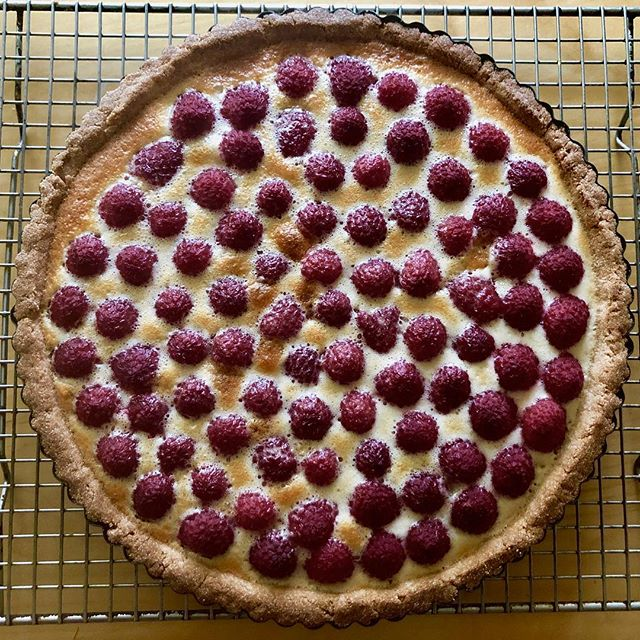 Gluten free berry tart. Recipe link in profile. Recipe test in my belly.