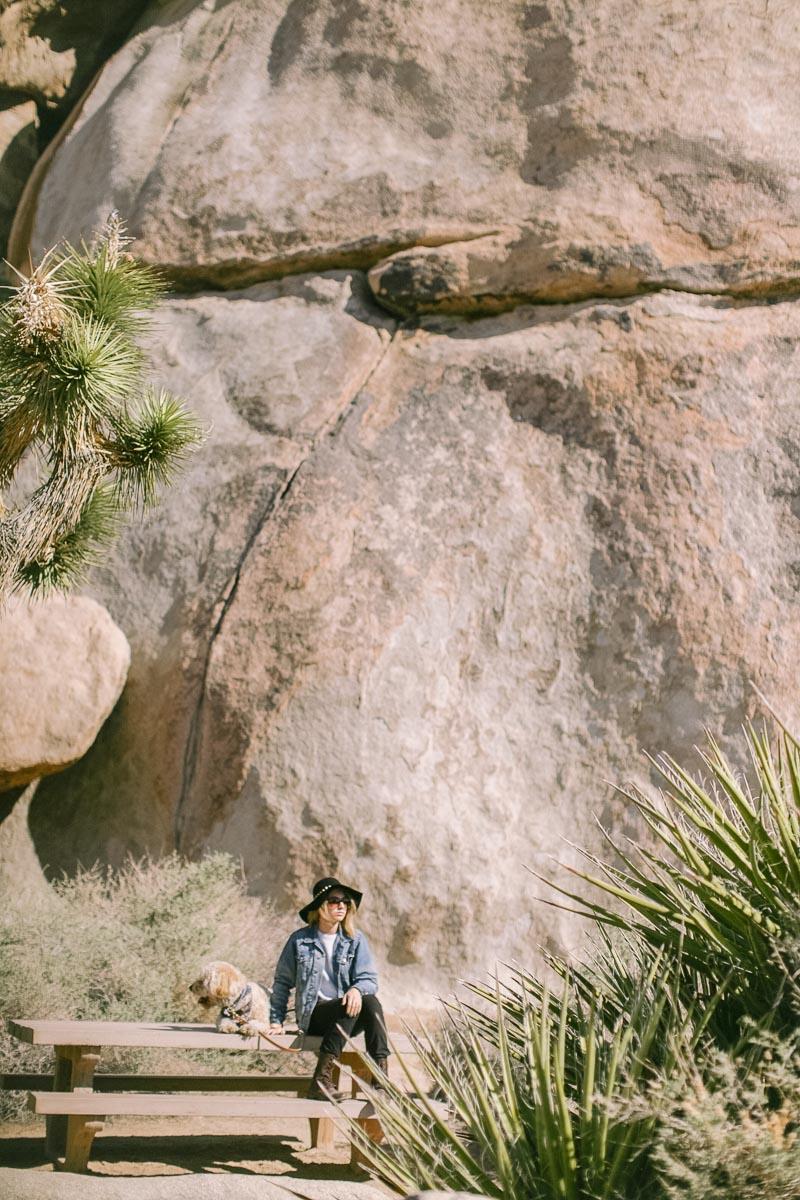 Palm Springs wedding photographer-38.jpg
