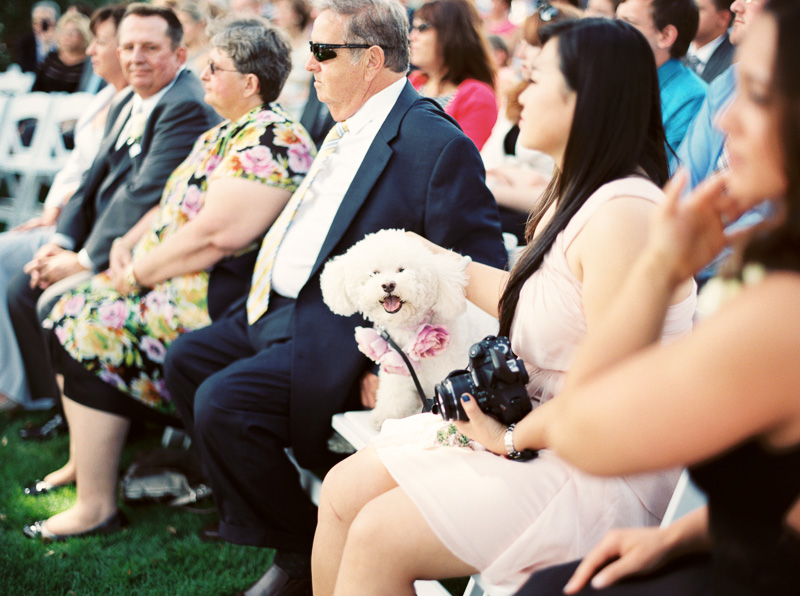Santa Cruz wedding photographer-photo-14.jpg