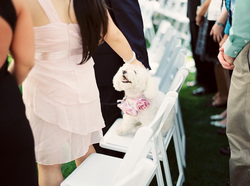 Santa Cruz wedding photographer-photo-17.jpg