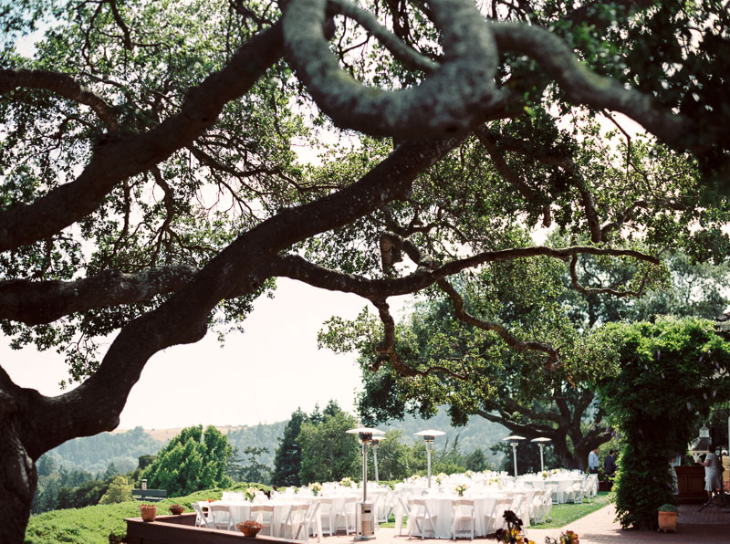 Santa Cruz wedding photographer-photo-48.jpg