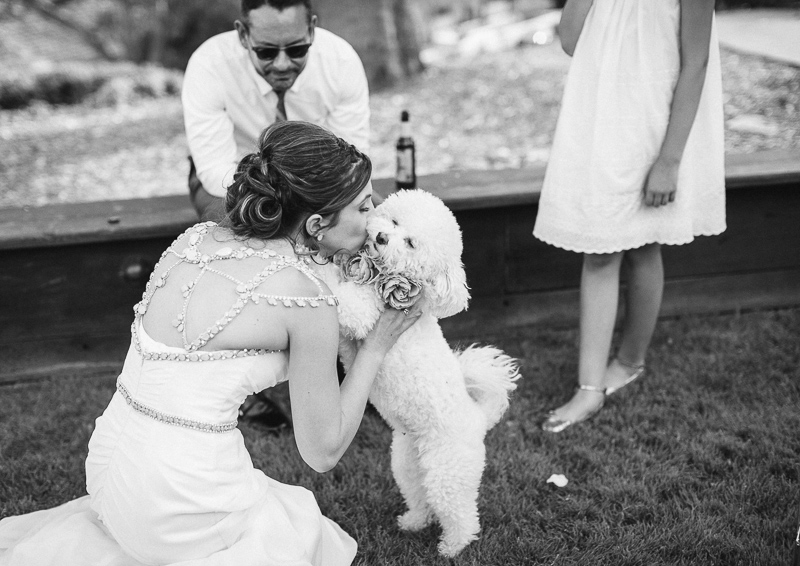 Santa Cruz wedding photographer-photo-53.jpg