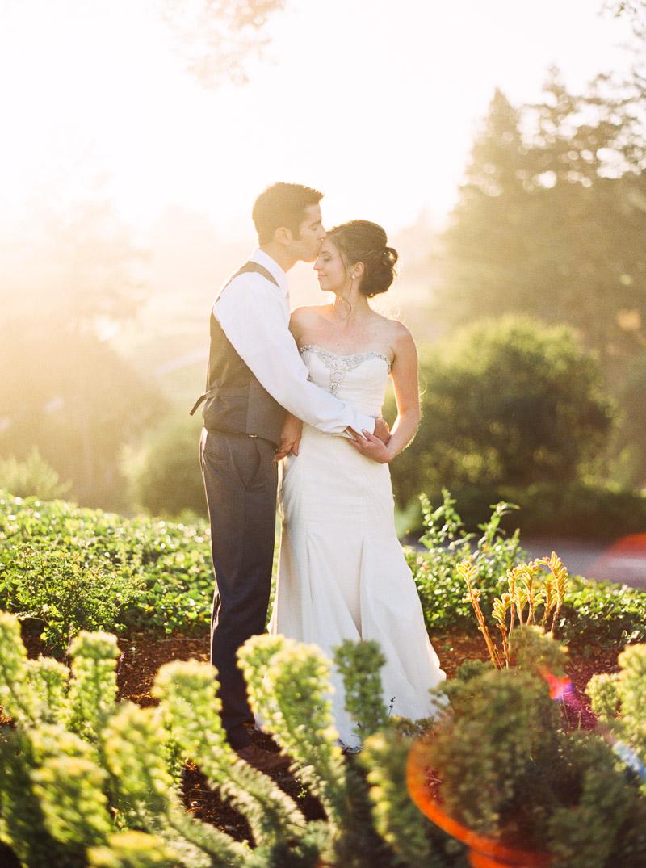 Santa Cruz wedding photographer-photo-59.jpg