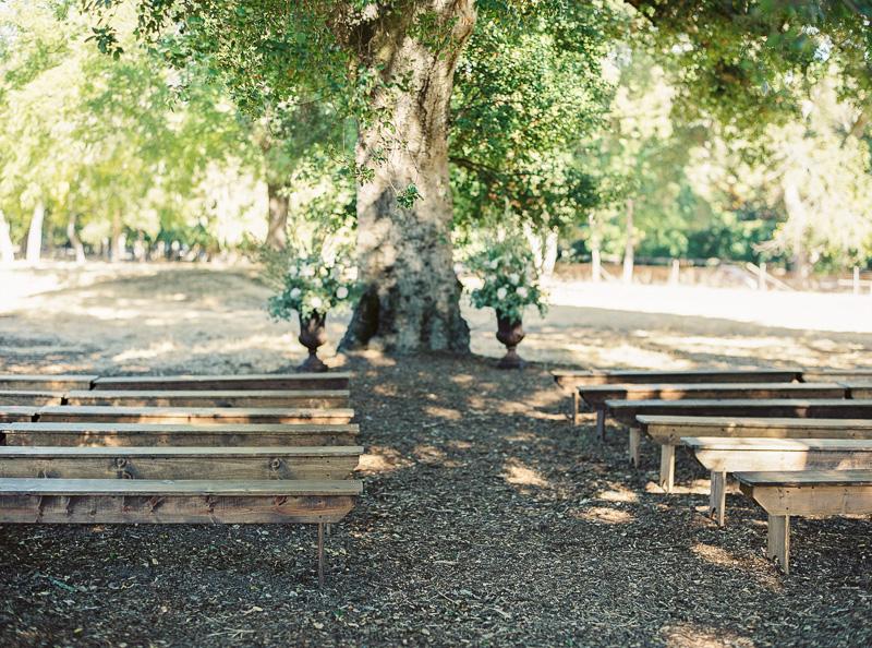 Bay Area film wedding photographer-photo-46.jpg