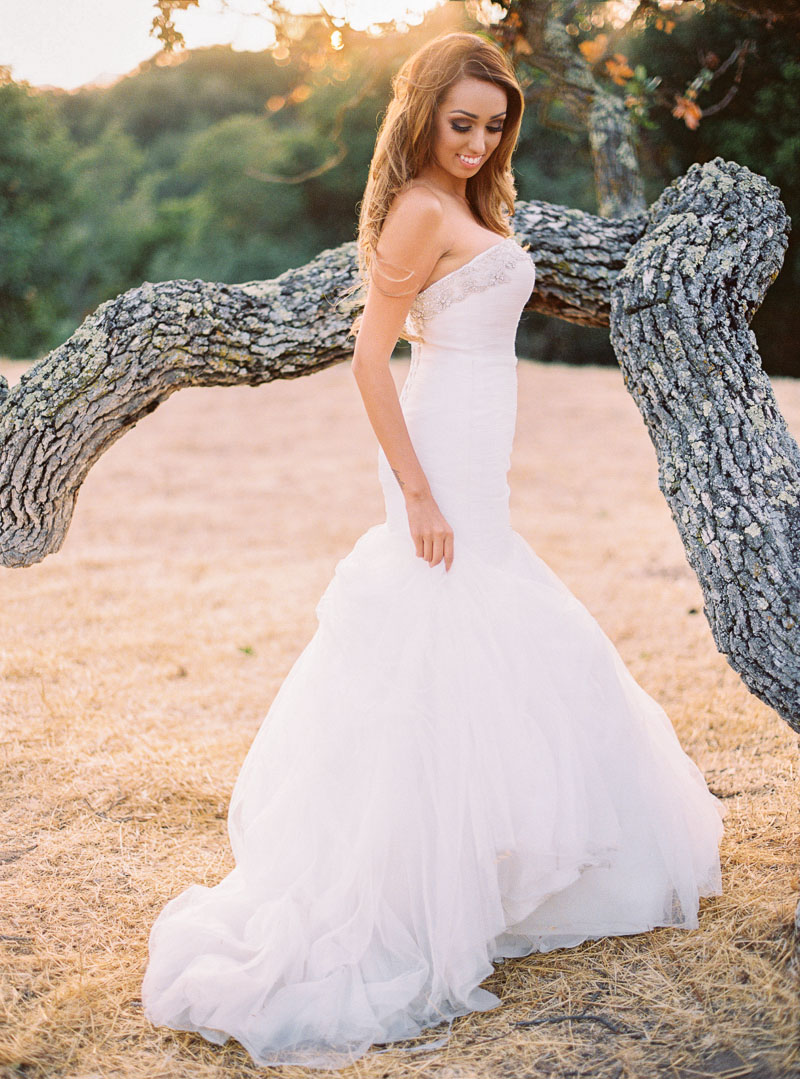 Carmel wedding photographer-photo-80.jpg