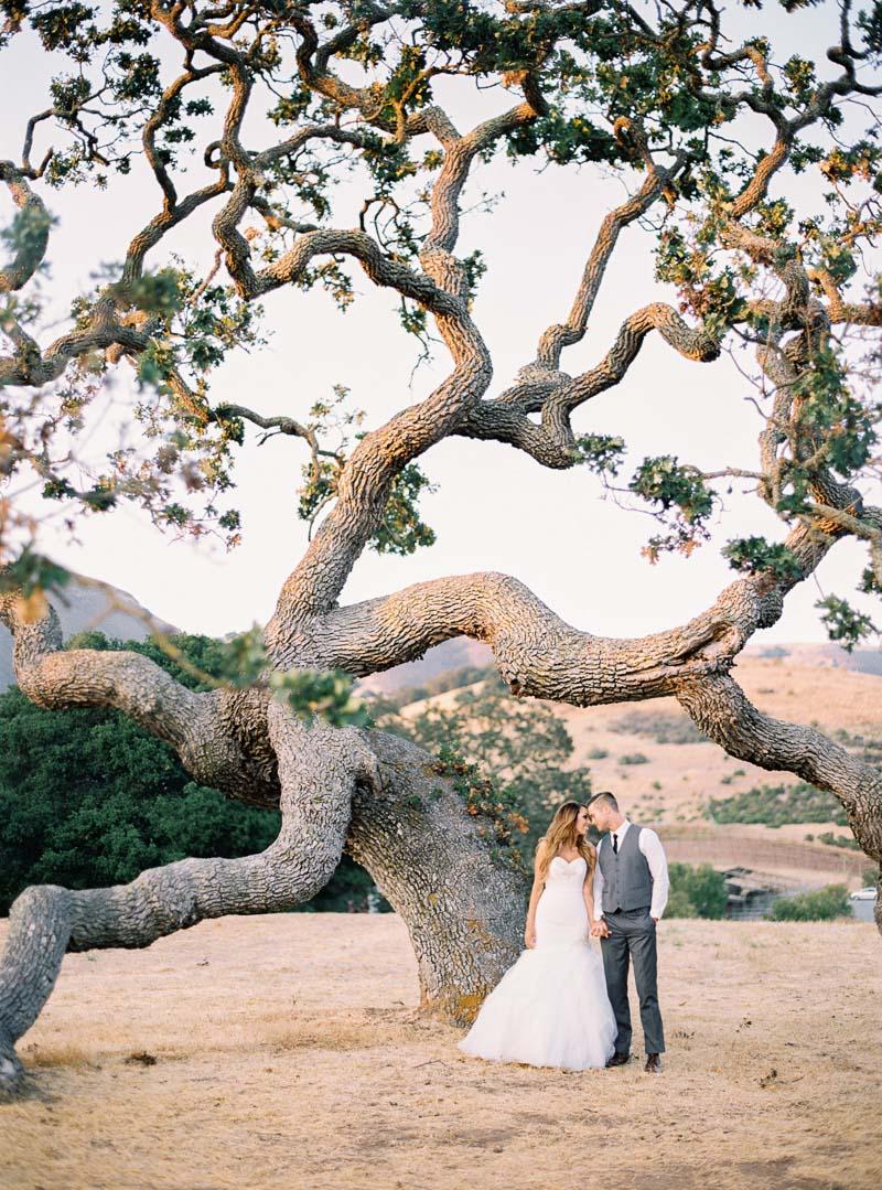 Carmel wedding photographer-photo-82.jpg