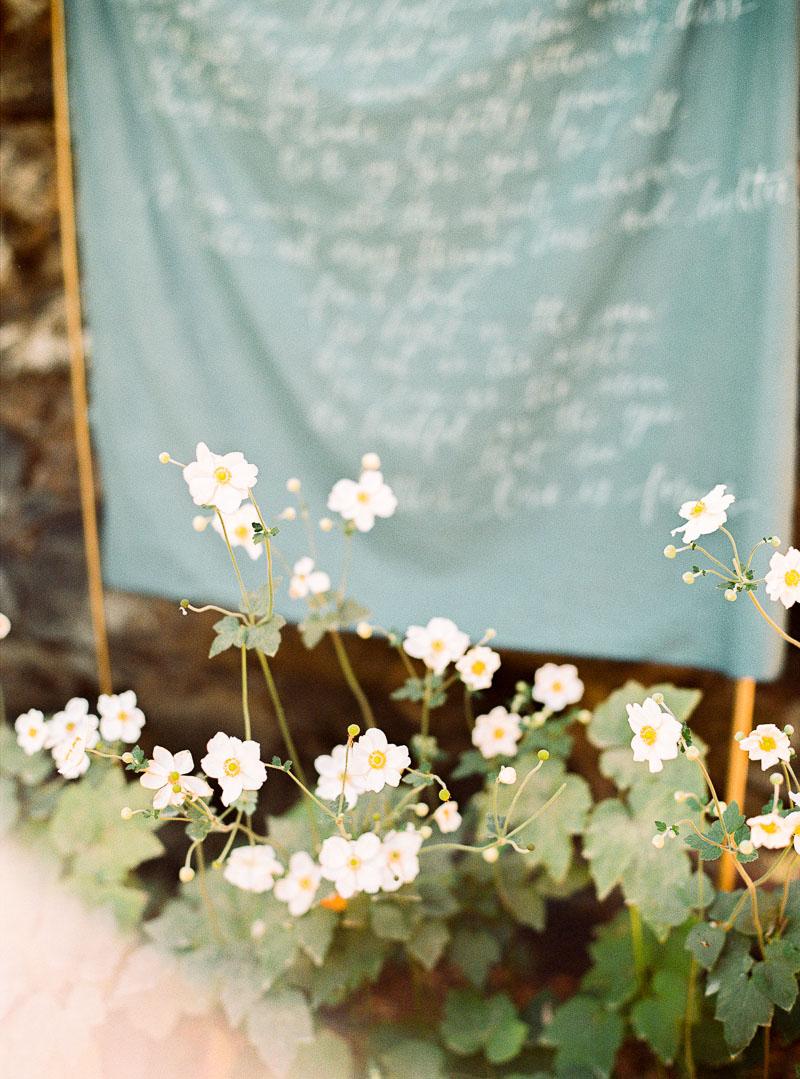 Napa wedding photographer-photo-49.jpg