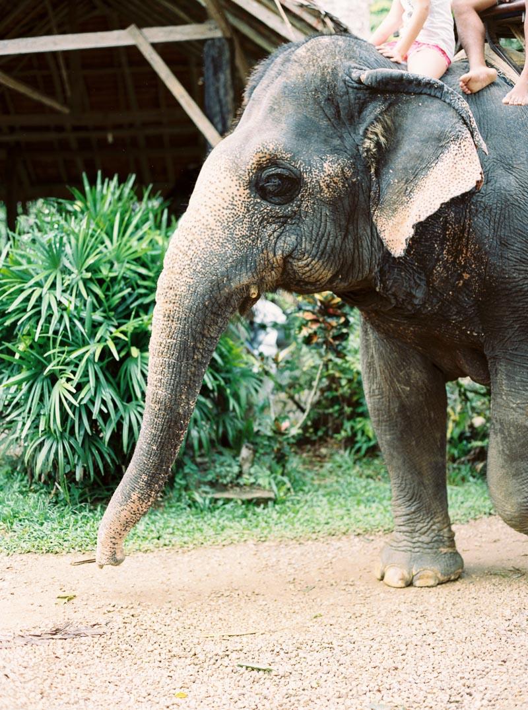 Thailand trip-30.jpg