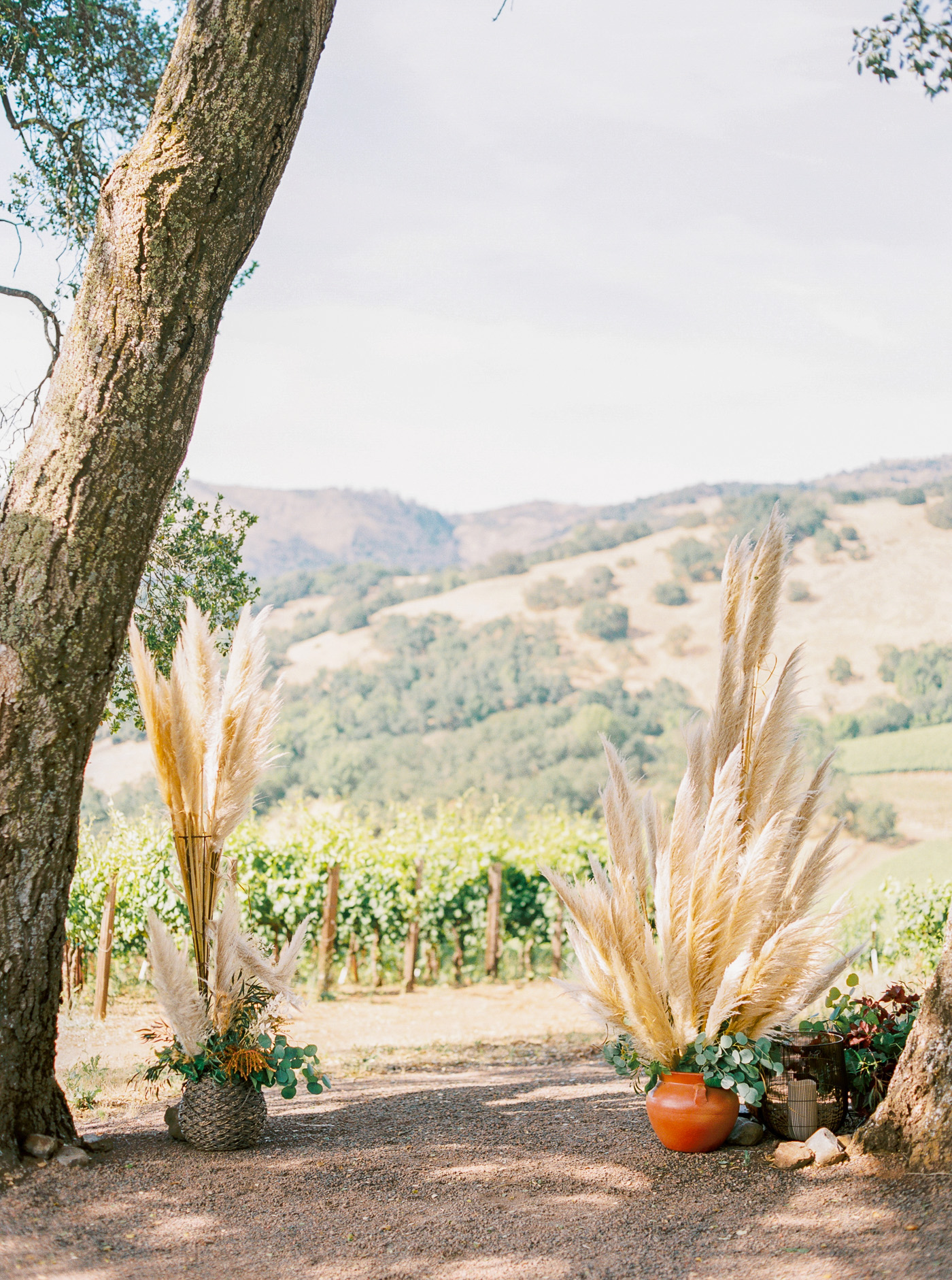 Kunde winery wedding-33.jpg