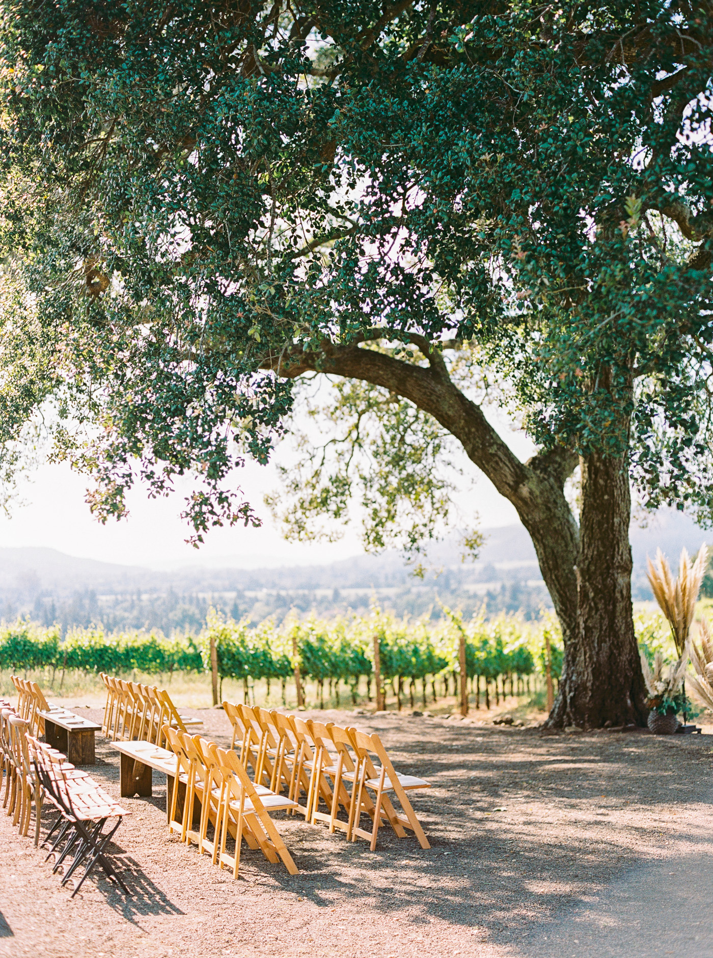 Kunde winery wedding-49.jpg