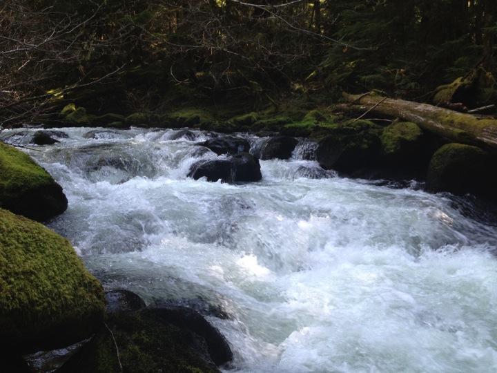 Falls Creek, Washington