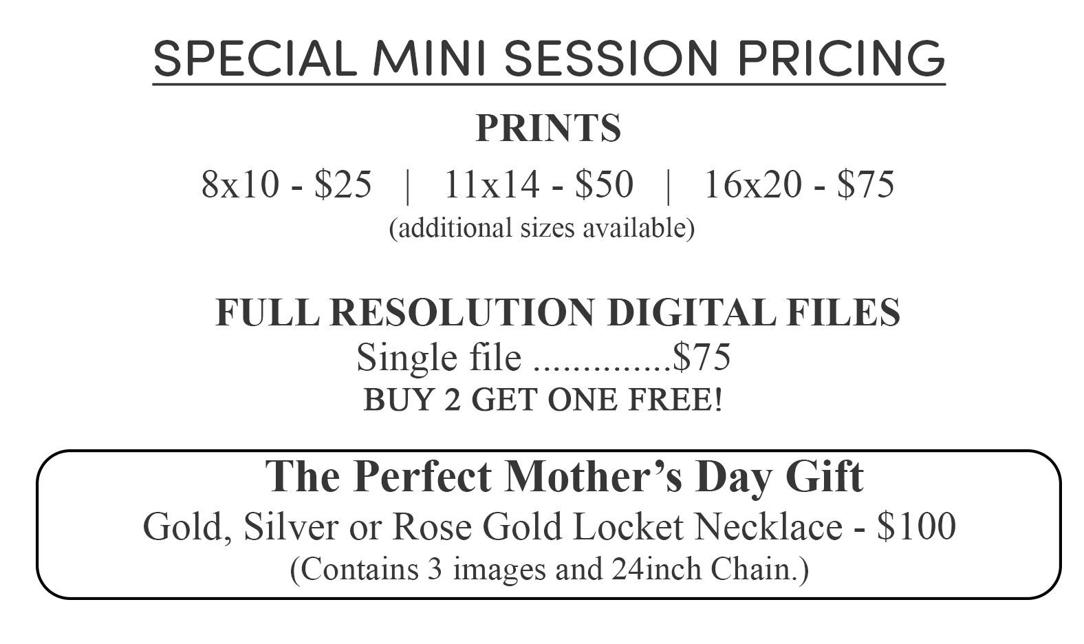 Mini_Session_Products_NEW.jpg