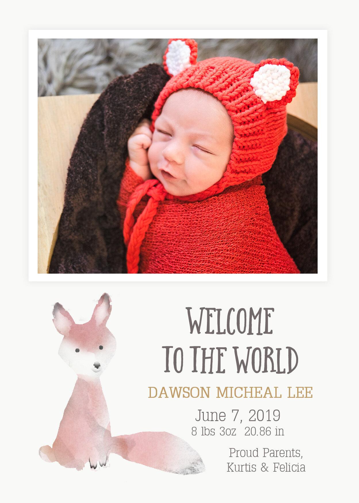 BabyFoxBirthAnnouncement.jpg