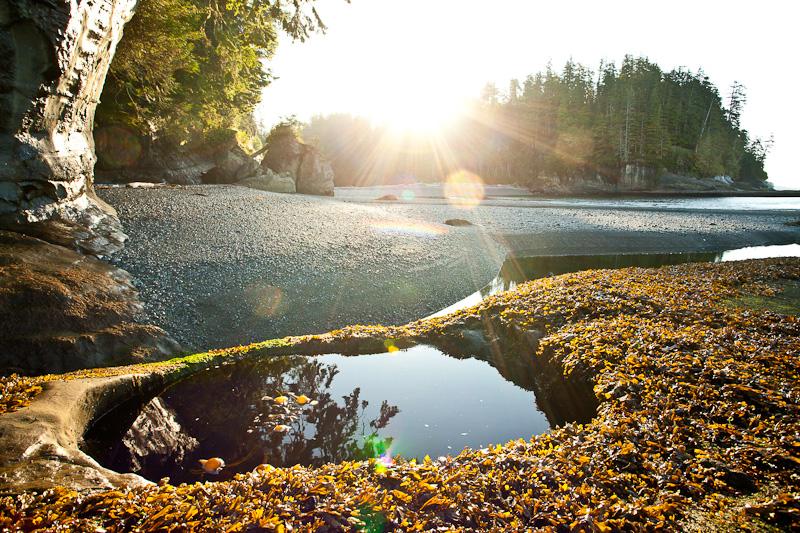 West Coast Trail tide pool at Camper Creek