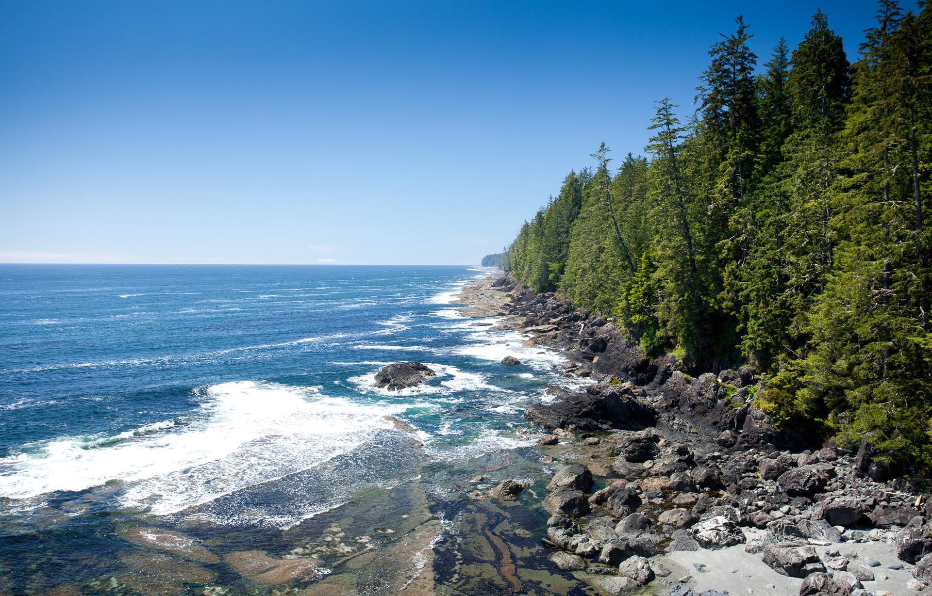 west-coast-trail-blue-sky.jpg
