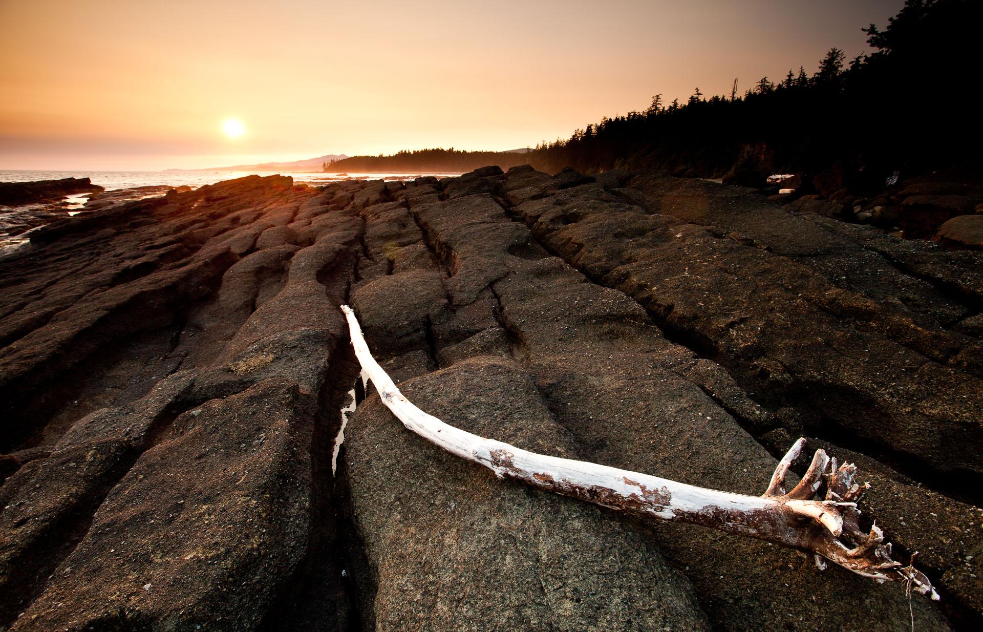 west-coast-trail-driftwood-sunset.jpg