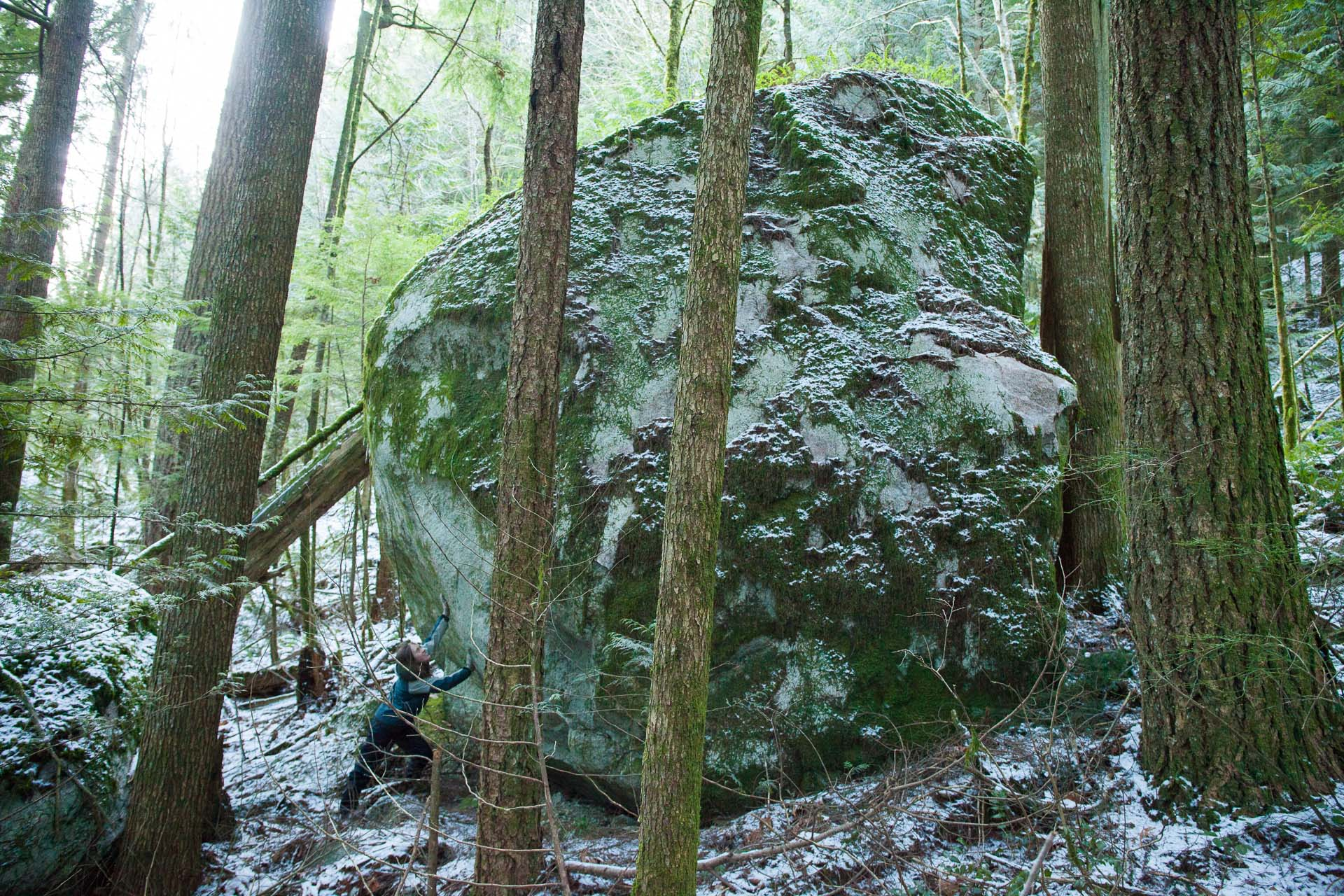 giant-boulder-in-forest-with-person.jpg
