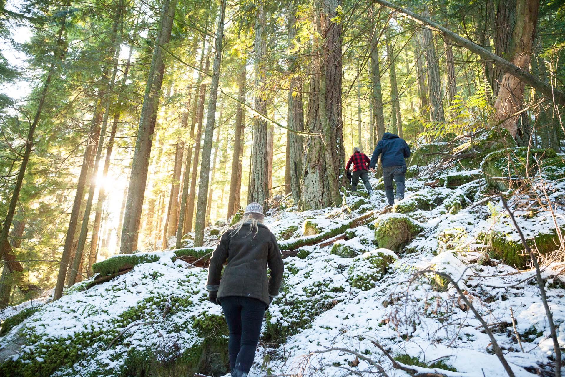 hiking-through-snowy-forest.jpg