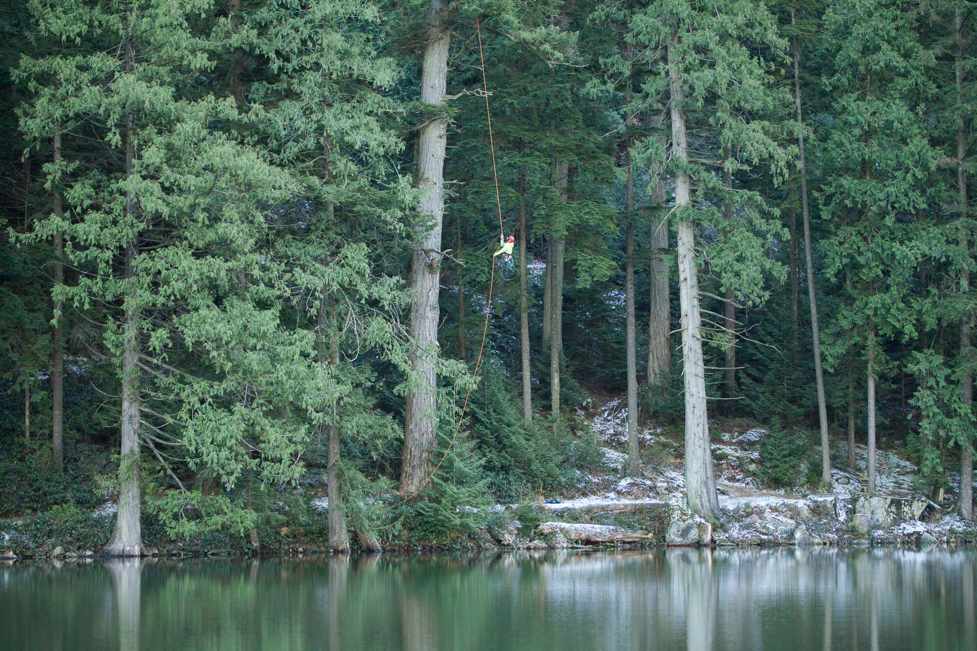 tree-climbing-at-echo-lake-2.jpg