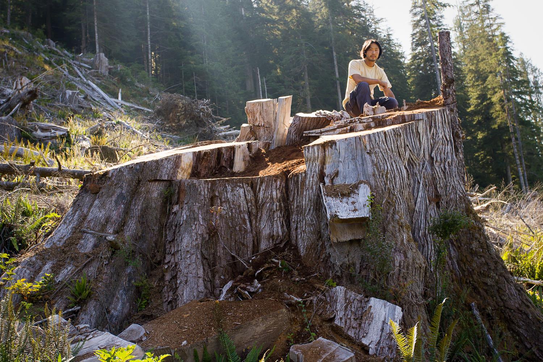 walbran-valley-ken-wu-big-stump.jpg