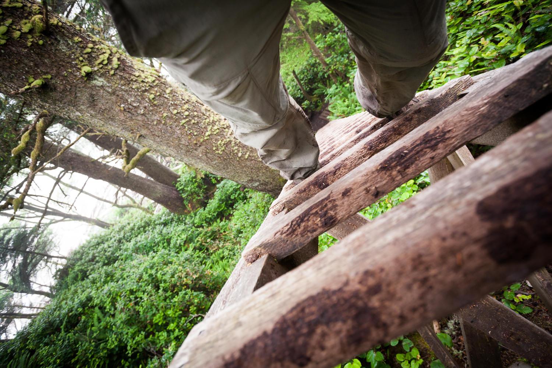 west-coast-trail-ladder-pov.jpg