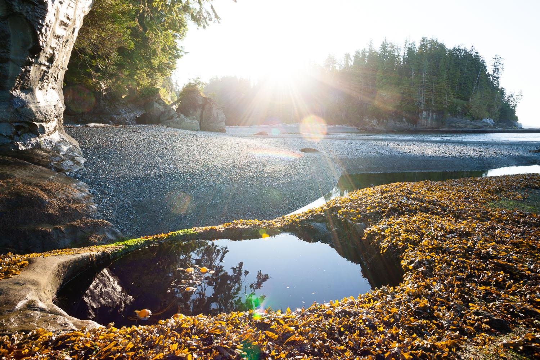 west-coast-trail-tidal-pool-sunrise.jpg
