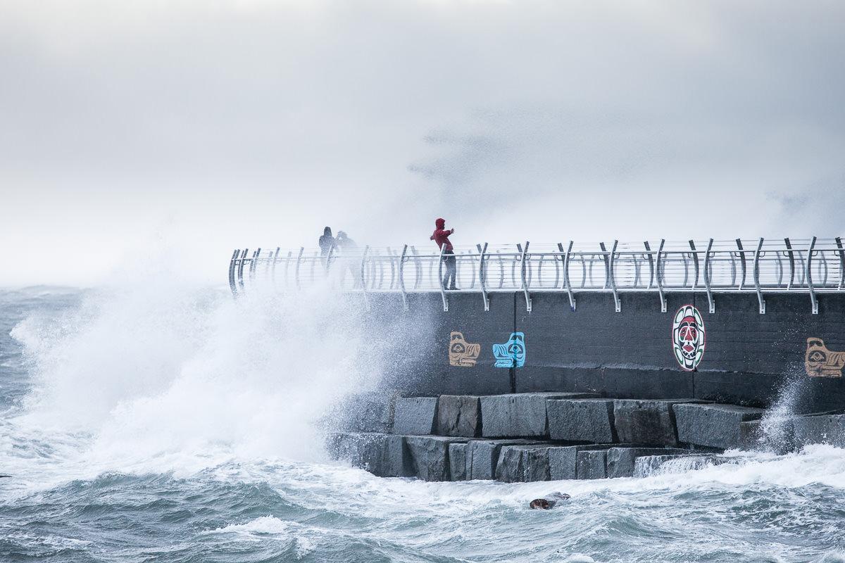 wind-storm-victoria-bc-tj-watt-94.jpg