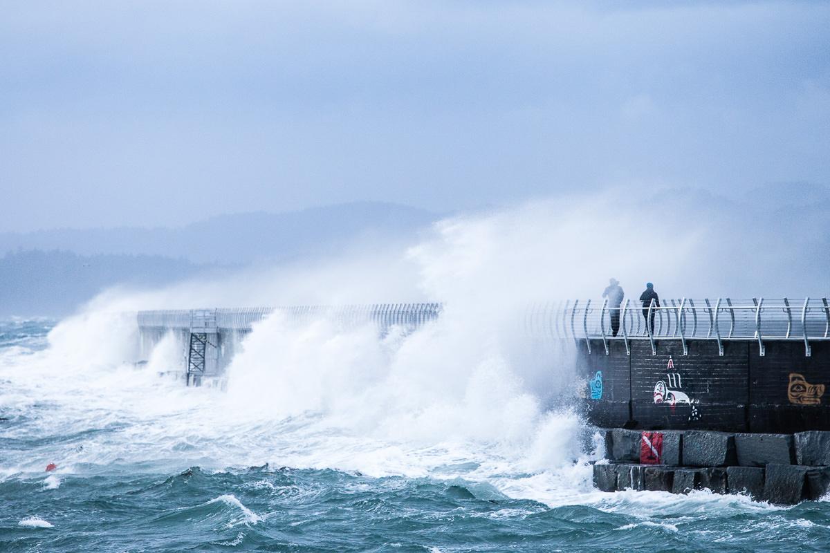 wind-storm-victoria-bc-tj-watt-151.jpg