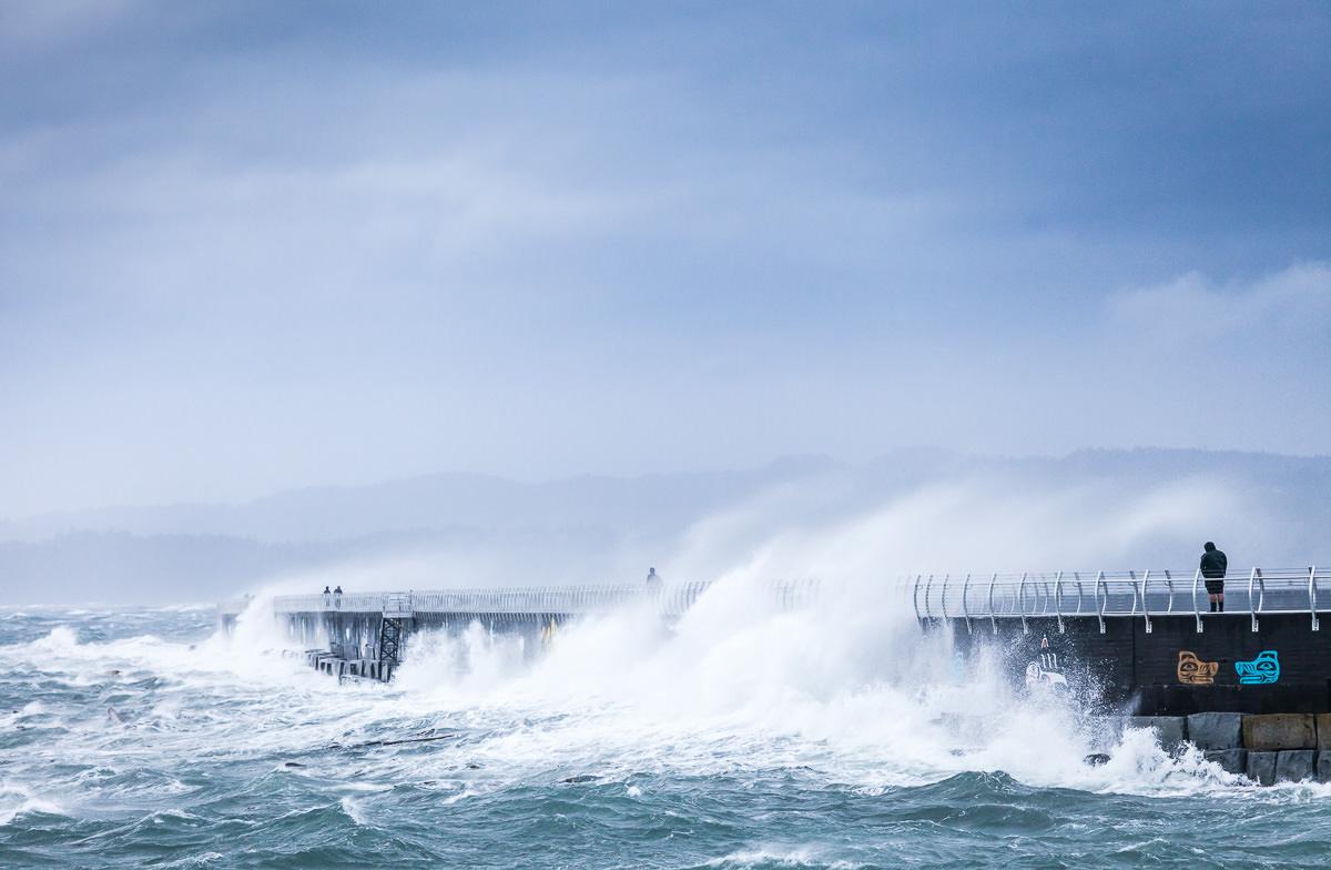 wind-storm-victoria-bc-tj-watt-164.jpg
