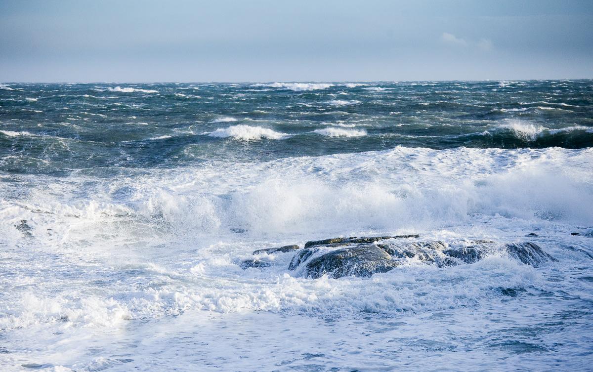 wind-storm-victoria-bc-tj-watt-251.jpg