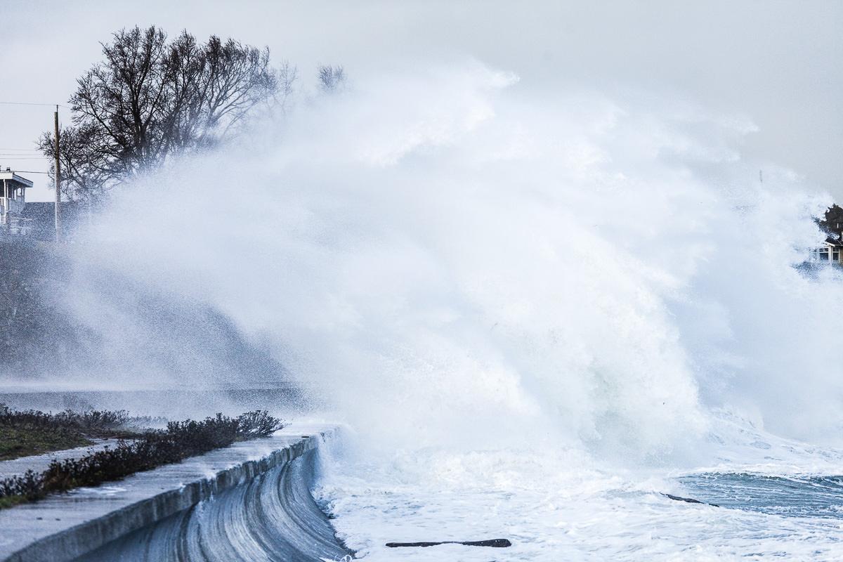 wind-storm-victoria-bc-tj-watt-266.jpg