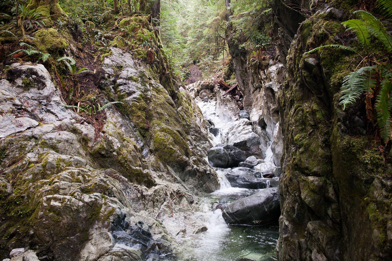 Walbran-Feb-2016-Limetstone-Canyon-3.jpg