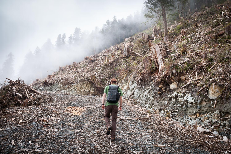 tj-watt-hiking-clearcut-photography.jpg