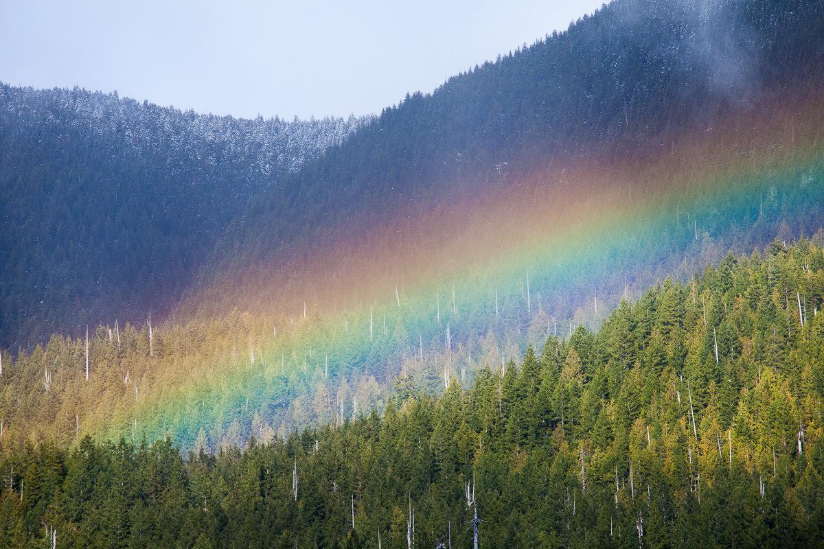 Rainbow-Port-Renfrew-TJ-Watt-2.jpg