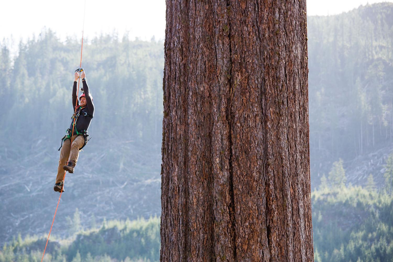 tj-watt-climbing-big-lonely-doug-5.jpg