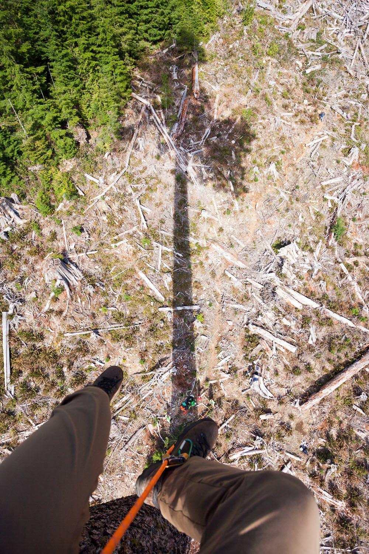 big-lonely-doug-tree-climb-2016-11.jpg